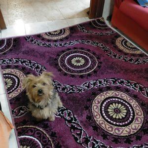 alfombras mod: circulo romano